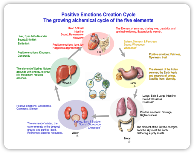 cycle-5-elements-positifs