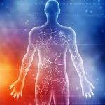 Human Body and Alchemy